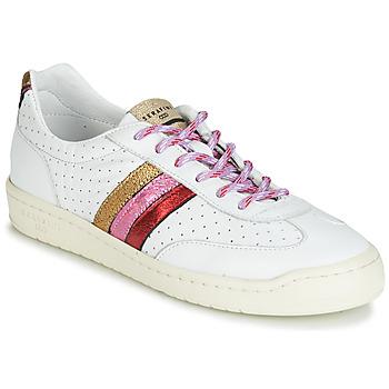 Topánky Ženy Nízke tenisky Serafini COURT Viacfarebná