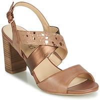 Topánky Ženy Sandále Caprice BOLAO Hnedá