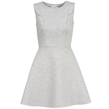 Oblečenie Ženy Krátke šaty Naf Naf ELOLA Šedá