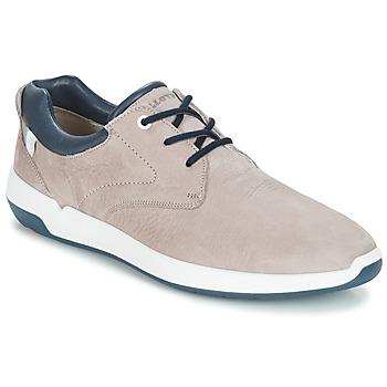 Topánky Muži Nízke tenisky Lloyd ACHILLES Béžová