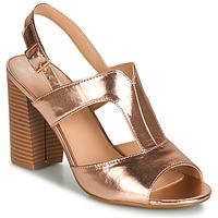 Topánky Ženy Sandále Moony Mood JALILIA Bronzová