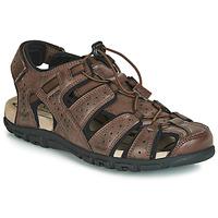 Topánky Muži Športové sandále Geox UOMO SANDAL STRADA Hnedá