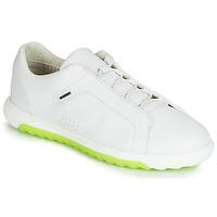 Topánky Muži Nízke tenisky Geox U NEXSIDE Biela
