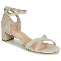 Topánky Ženy Sandále Lauren Ralph Lauren FOLLY Béžová