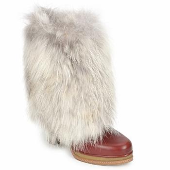 Topánky Ženy Čižmičky D&G DS3553 Hnedá / Béžová