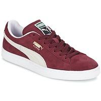 Topánky Nízke tenisky Puma SUEDE CLASSIC Bordová