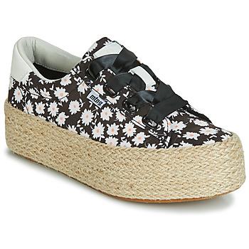 Topánky Ženy Nízke tenisky MTNG WANDA Biela / Čierna