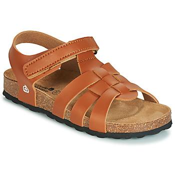 Topánky Chlapci Sandále Citrouille et Compagnie JANISOL Hnedá