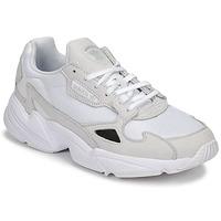 Topánky Ženy Nízke tenisky adidas Originals FALCON W Biela