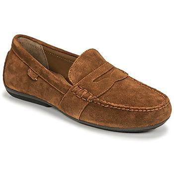 Topánky Muži Mokasíny Polo Ralph Lauren REYNOLD Hnedá