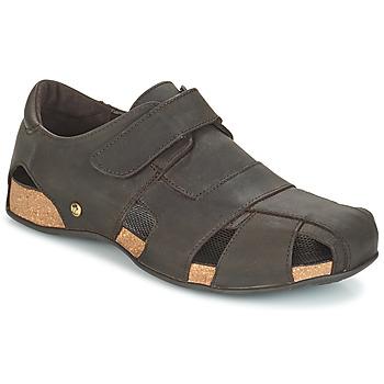 Topánky Muži Sandále Panama Jack FLETCHER Hnedá