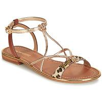 Topánky Ženy Sandále Les Tropéziennes par M Belarbi HIRONDEL Leopard / Zlatá