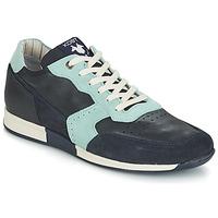Topánky Muži Nízke tenisky Kost HOOPAR Modrá