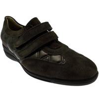 Topánky Ženy Nízke tenisky Calzaturificio Loren LOL8075m marrone