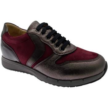 Topánky Ženy Nízke tenisky Calzaturificio Loren LOC3818bo tortora