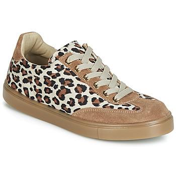 Topánky Ženy Nízke tenisky André ARDOISE Leopard
