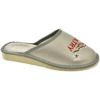 f54f9df830ca Topánky Ženy Papuče John-C Dámske sivé papuče TATRY sivá