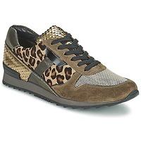 Topánky Ženy Nízke tenisky Kennel + Schmenger LIZAN ťavia hnedá