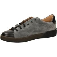 Topánky Muži Nízke tenisky Frau SUEDEBIMATER grigi-grigio