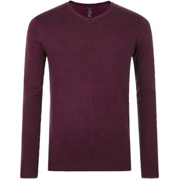Oblečenie Muži Svetre Sols GLORY SWEATER MEN violeta