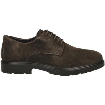 Topánky Muži Derbie IgI&CO UGL 21006 caffe-caffe_SS_