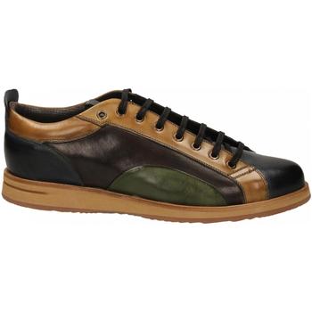 Topánky Muži Derbie Brecos VITELLO azzurro-legno