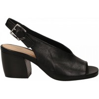 Topánky Ženy Sandále Salvador Ribes GRETA HARLEY nero