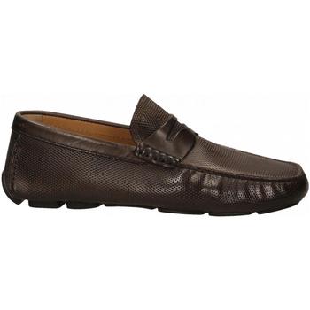 Topánky Muži Mokasíny Brecos VITELLO cioccolato