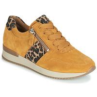 Topánky Ženy Nízke tenisky Gabor 3342010 Žltá horčicová