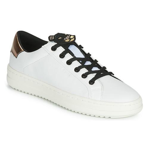 Topánky Ženy Nízke tenisky Geox D PONTOISE Biela / Medená