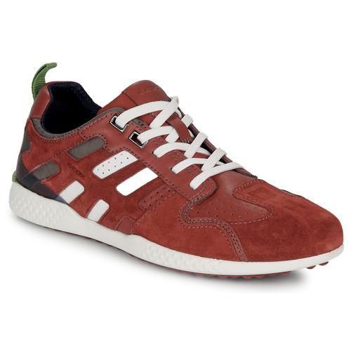 Topánky Muži Nízke tenisky Geox U SNAKE.2 Hnedá / Červená tehlová