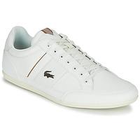 Topánky Muži Nízke tenisky Lacoste CHAYMON 319 1 Biela