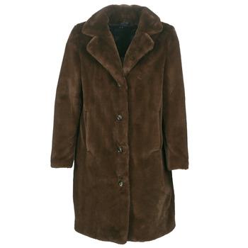 Oblečenie Ženy Kabáty Oakwood CYBER Hnedá