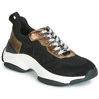 Topánky Ženy Nízke tenisky Mam'Zelle HELIUM Čierna / Bronzová