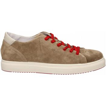 Topánky Muži Nízke tenisky IgI&CO USH 31327 tortora