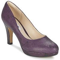 Topánky Ženy Lodičky Clarks CRISP KENDRA Fialová