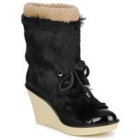 Topánky Ženy Čižmičky Sonia Rykiel HAIRY čierna
