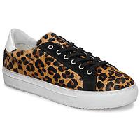 Topánky Ženy Nízke tenisky Ikks BP80245-62 Leopard