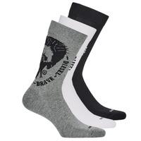 Textilné doplnky Muži Ponožky Diesel SKM-RAY-THREEPACK-0EASX-E3843 Čierna / Šedá / Biela
