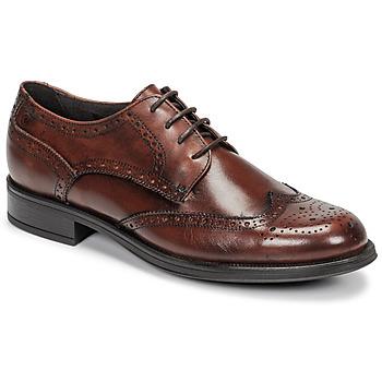 Topánky Muži Derbie Carlington LOUVIAN Hnedá