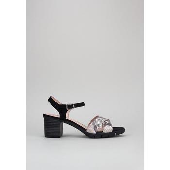 Topánky Ženy Sandále Sandra Fontan  Čierna