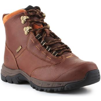 Topánky Ženy Polokozačky Ariat Berwick lace GTX Insulated 10016298 brown
