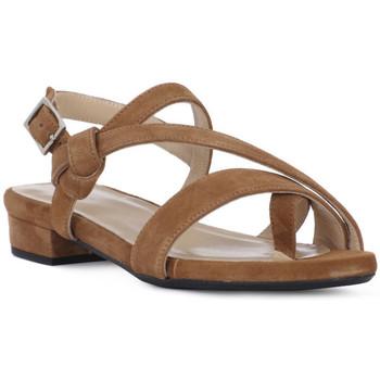 Topánky Ženy Sandále Frau CAMOSCIO SELLA Marrone