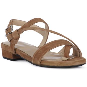Topánky Ženy Sandále Frau CAMOSCIO NERO Nero