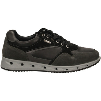 Topánky Muži Nízke tenisky IgI&CO ULSGT 21389 grisc-grigio-scuro