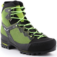 Topánky Muži Turistická obuv Salewa Trekking shoes  Ms Raven 3 GTX 361343-0456 green