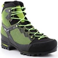 Topánky Muži Turistická obuv Salewa MS Raven 3 Gtx Čierna, Zelená