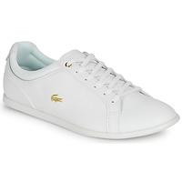 Topánky Ženy Nízke tenisky Lacoste REY LACE 120 1 CFA Biela / Zlatá