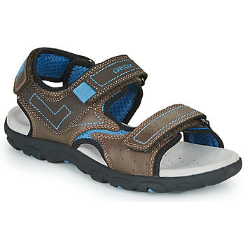 Topánky Chlapci Športové sandále Geox JR SANDAL STRADA Hnedá / Modrá