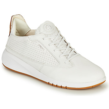 Topánky Ženy Nízke tenisky Geox D AERANTIS Biela